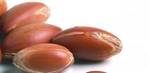 noix-d-argan-poudre-compacte-claire-avril-mondebio